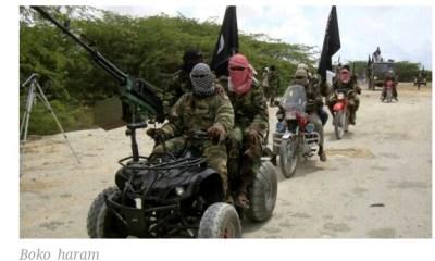 24 Killed by Terrorist In Adamawa Community
