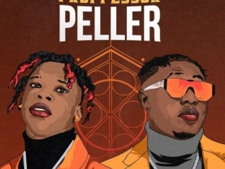 Download Music: Professor Peller -Seyi Vibez Ft Zlatan