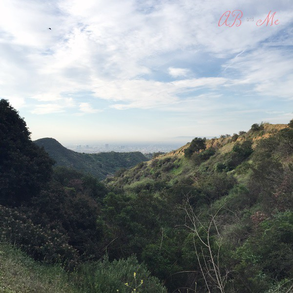 Hollywood Sign Hike9