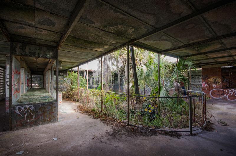 Miami Truck Center >> Tom Gaskins Cypress Knee Museum   Abandoned Florida