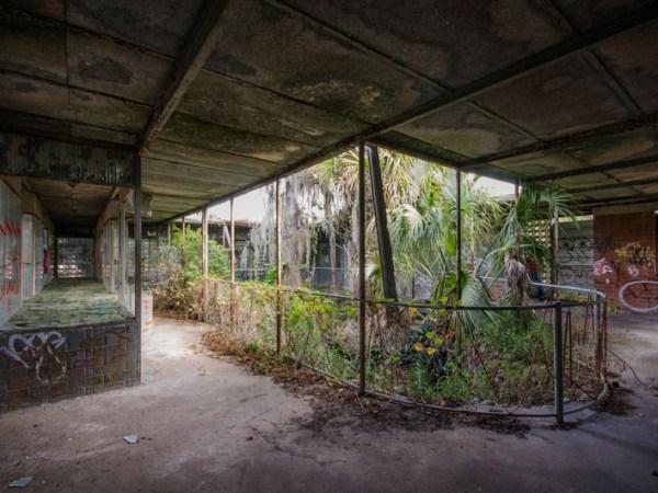 Tom Gaskins Cypress Knee Museum