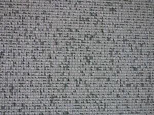 800px-Transmediale-2010-Ryoji_Ikeda-Data-Tron-2