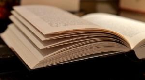 La lectura facilitan la convivencia democrática. Imagen cedida por condesign.