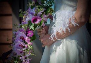 Alison Amos MacIsaac /Flowers