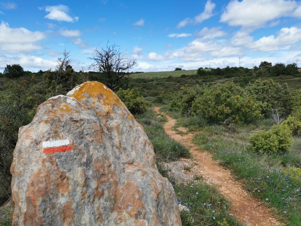 chemin-saint-jacques-compostelle-occitanie