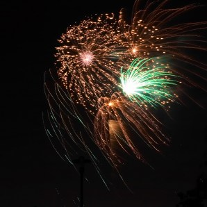 Fireworks and bonfire night fear for pets. © Jason Smith | Dreamstime Stock Photos