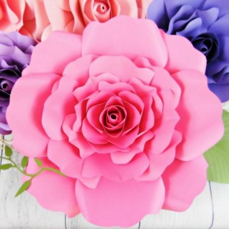 Giant Eden Rose Flower Template.