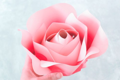 DIY Paper Flower Alora Garden Rose