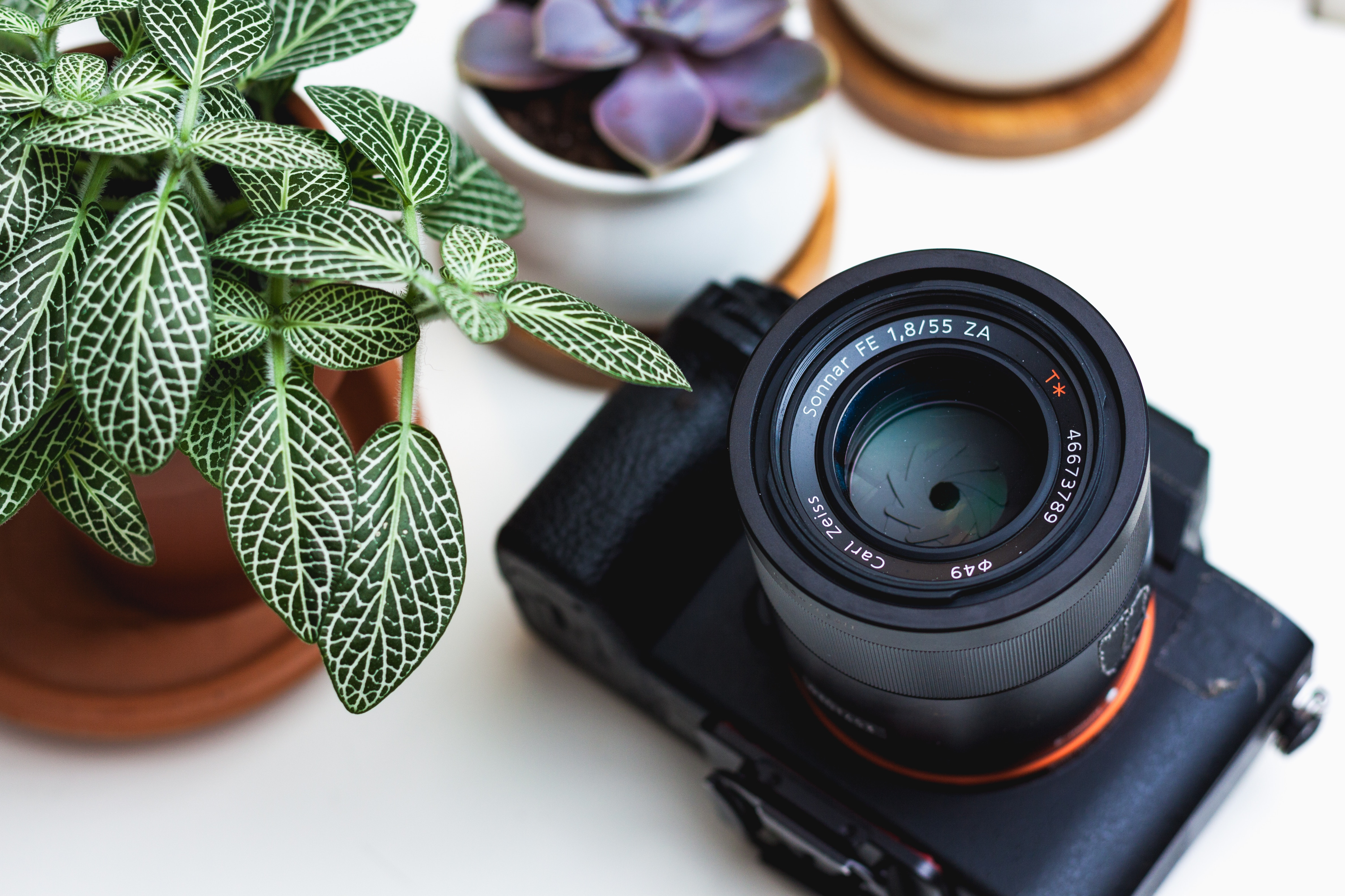 Product Photography Tips and Tricks: 9 Photo Tips You Must Do