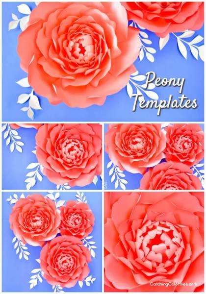 DIY large paper peony flowers.