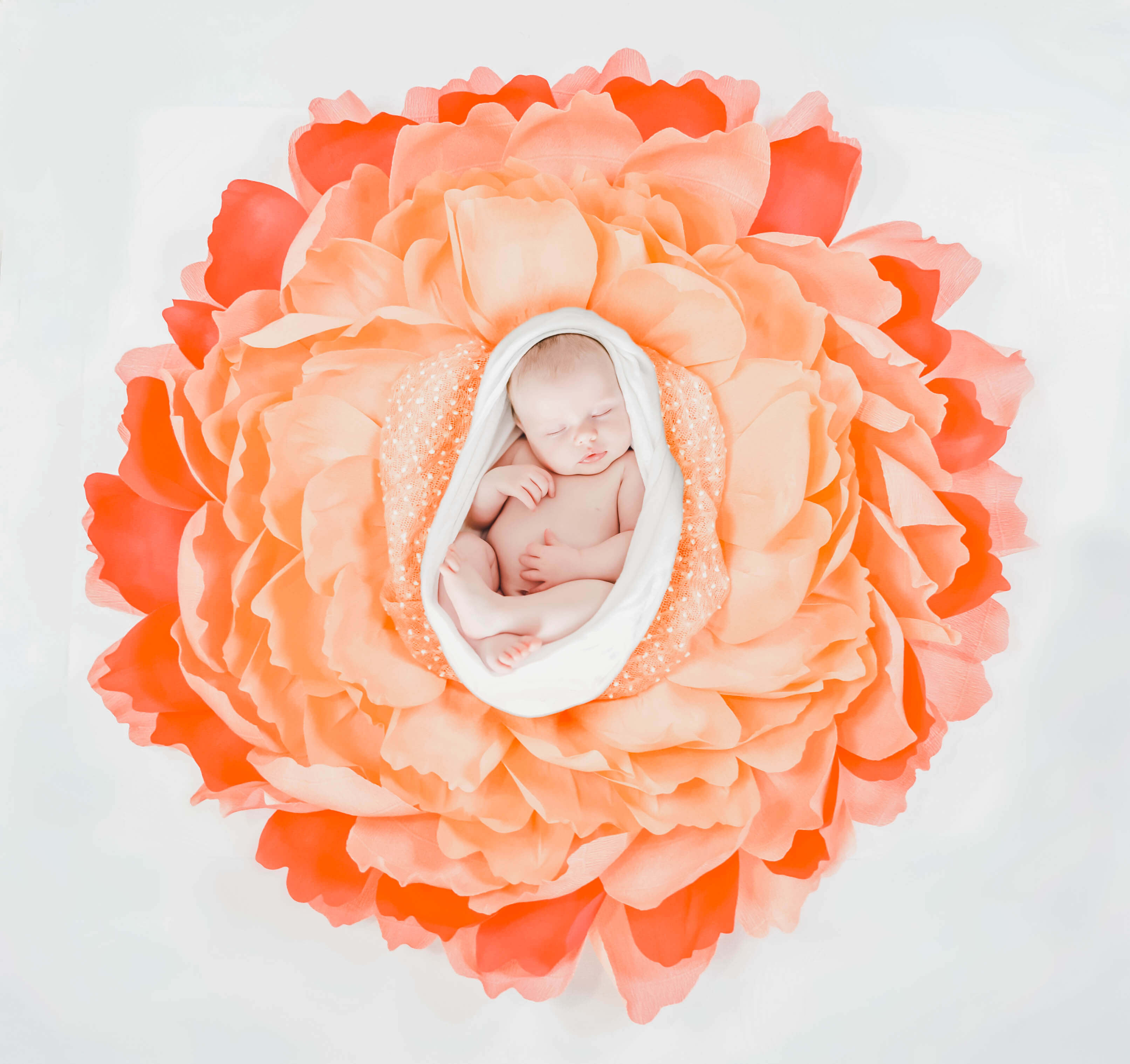 Giant Crepe Paper Flower Newborn Nest