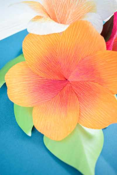 DIY Crepe Paper Plumeria Flowers. Learn how to make these tropical plumeria Hawaiian paper flowers. You can hand cut these with the free PDF template or use the SVG cut files with your Cricut machine!