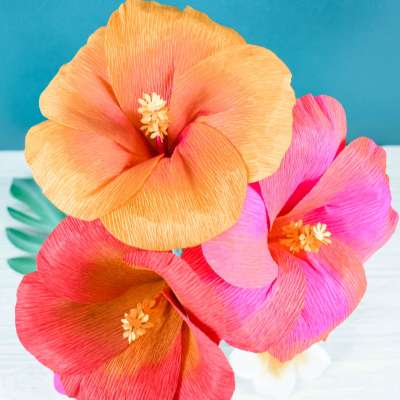 How to Make Crepe Paper Hibiscus Flowers