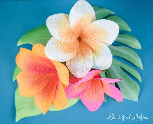 Plumeria flower templates