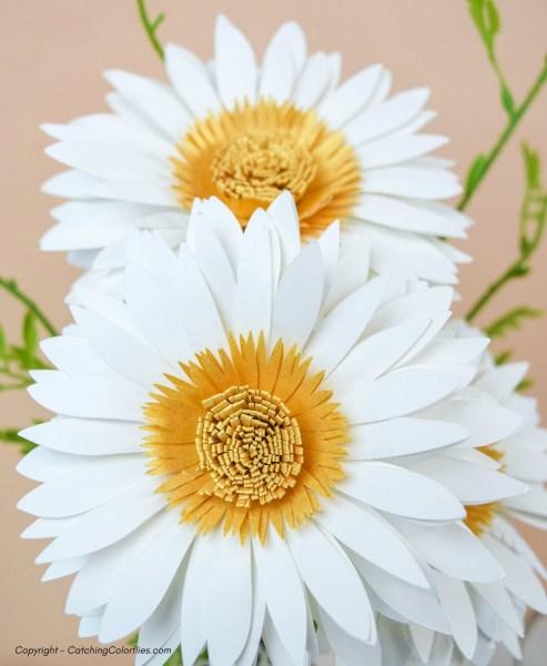 paper daisy tutorial by abbi kirsten