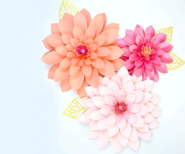 These giant paper dahlia flowers are the perfect party decor!