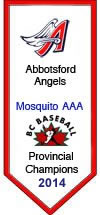 Mosquito AAA Provincial Champions 2014