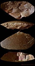 En busca del último neandertal