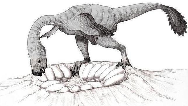 ¿Podían los pesados dinosaurios sentarse sobre sus huevos?