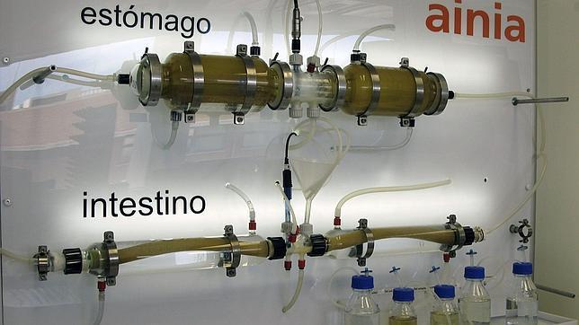 Desarrollan un colon artificial para estudiar la resistencia a los probióticos