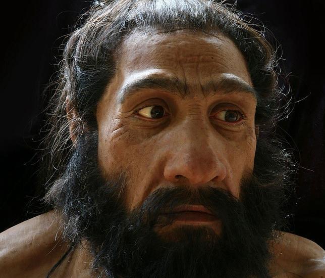 Los neandertales ya sufrían de enfermedades modernas como la psoriasis y el Crohn
