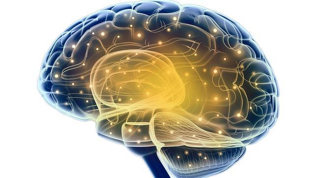 Según los expertos, no nos enseñan a tener una mente abierta