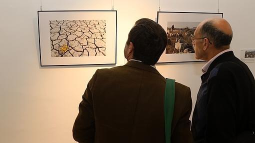Dos asistentes observan imágenes expuestas