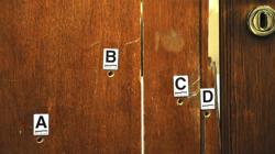 Los cuatro tiros que dio Pistorius contra la puerta del baño