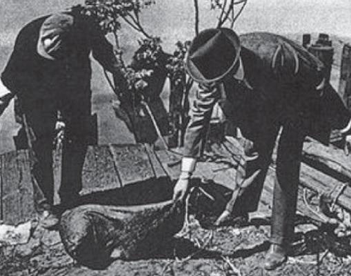 Cadáver decapitado