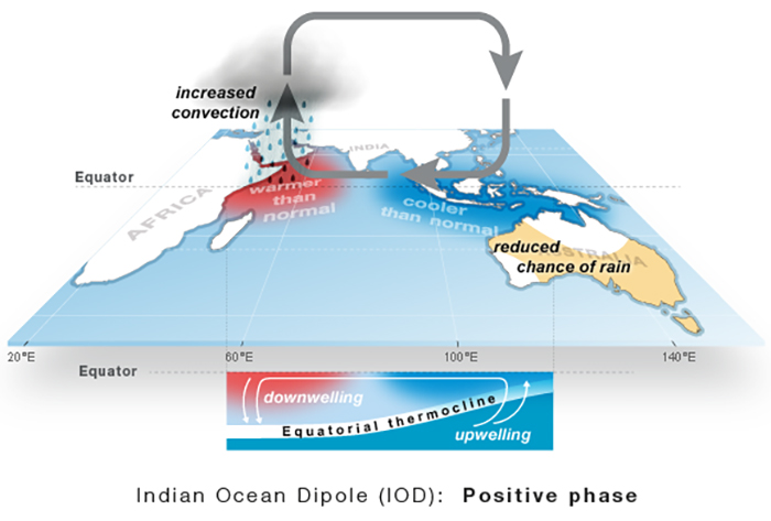 A graphic image showing what happens in the positive phase of the Indian Ocean Dipole.