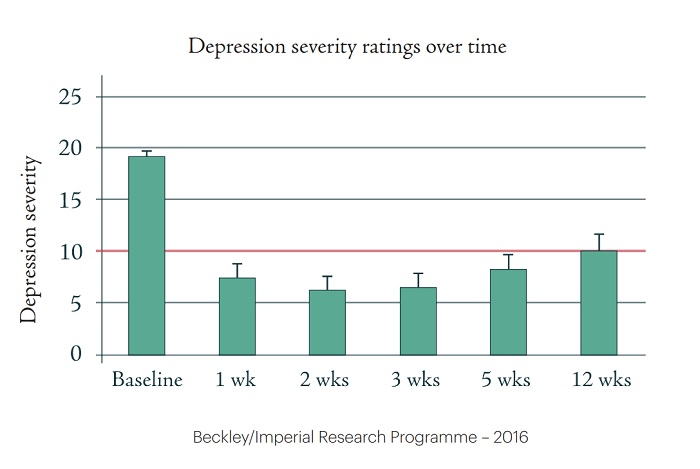 A graph from the Beckley/Imperial Research Programme shows the depression severity ratings over time.