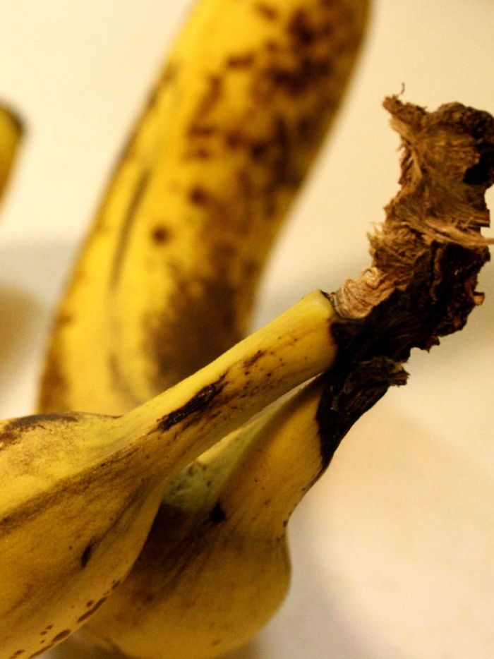 Cancer And Ripe Bananas How Bogus Claims Can Harm Your Health And The People You Love Abc News