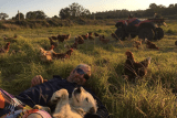 Dean Mayne lying in a grassy paddock with his dog and chickens around him and a quad bike in the background.