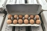 Pastured eggs in a carton.