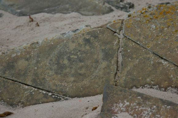 A rock fragment with circular carvings dotted into it lies on the beach