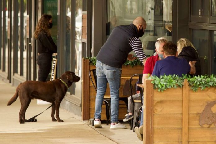 A brown Labrador waits outside a café while four guests sit at outdoor tables