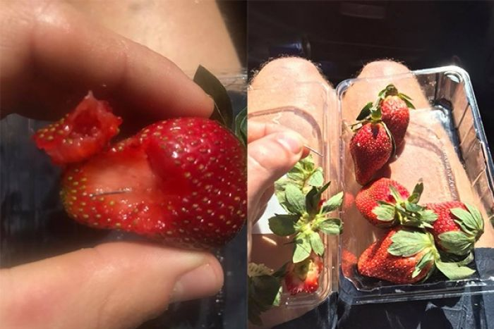 Image result for needles in strawberries