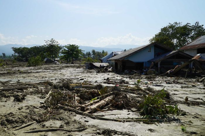 A field of mud and debris, with a few houses sunk up to their windows or roof-lines.