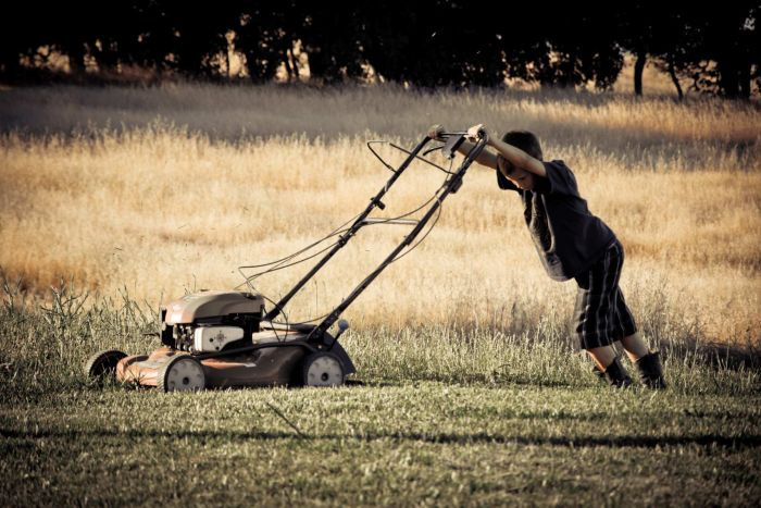 A boy pushes a mower, depicting the disadvantages of a grass yard.