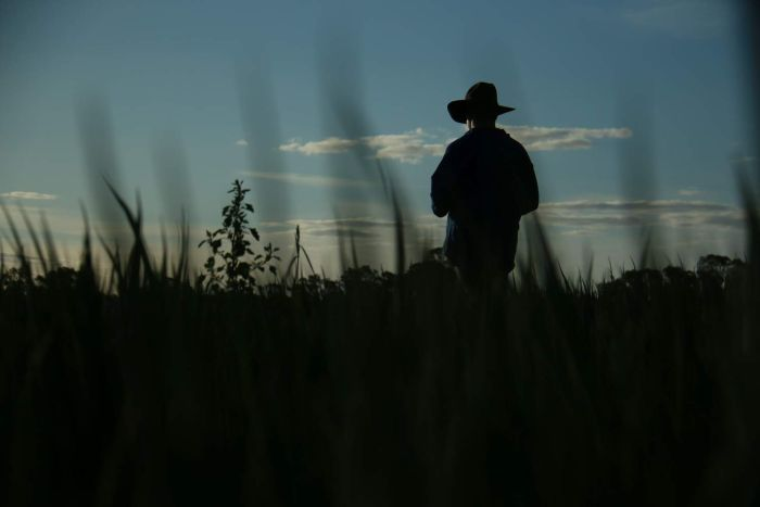 A farmer, facing away from the camera, is silhouetted against the sky.