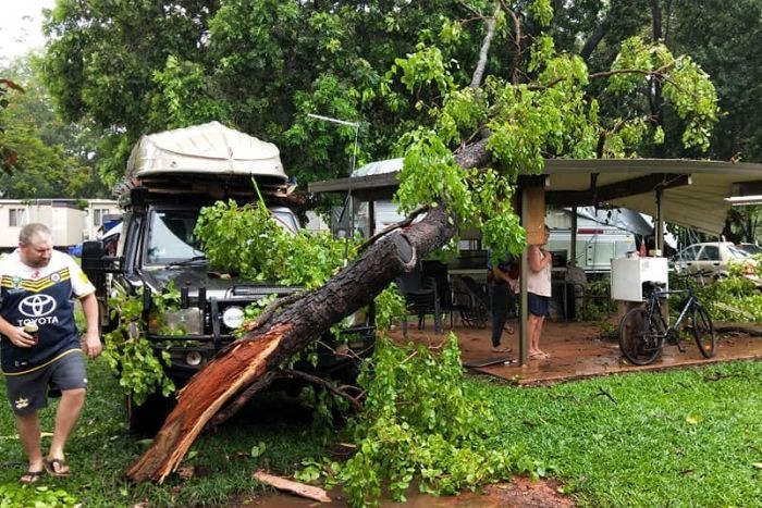 A tree ripped from the ground leans up against a four-wheel drive and a shelter. One of its branches has pierced the shelter.