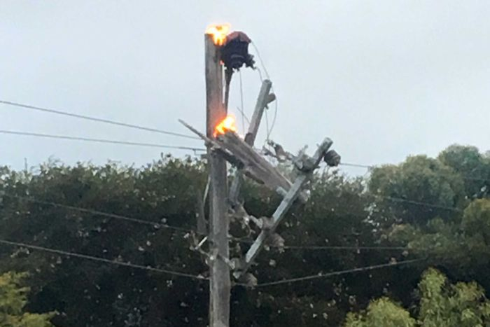 The top of an electricity pole on fire, with trees in the background.