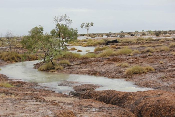 Water fills a previously dry riverbed in an arid outback landscape.