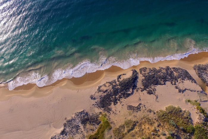 A drone shot with a birds eye view of blue waves crashing on Bunbury's Back Beach.