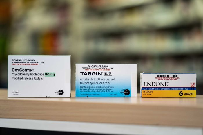 Packets of OxyContin, Targin and Endone.