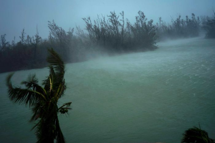 Strong winds from Hurricane Dorian blow the tops of trees and whisks up water from the surface of a canal.