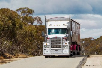 A truck drives along the Robinvale-Sea Lake Road with wide gravelly gaps visible on the side of the sealed road.
