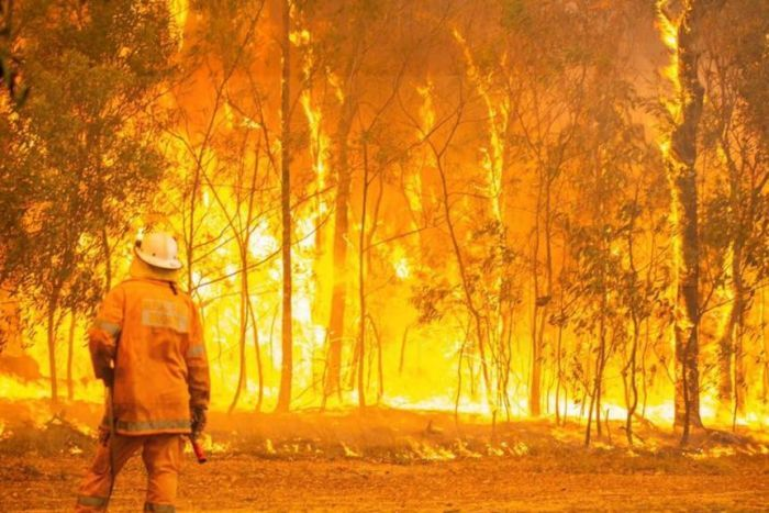 QFES images of firefighting teams fighting the Tinnanbar and Deepwater forest fires.