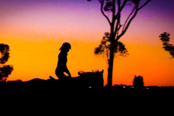 A silhouette of a rider on horseback at sunset.