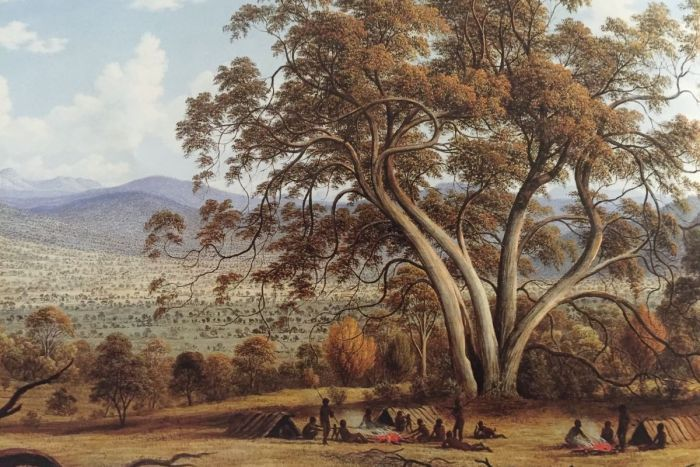 A painting by John Glover depicting Aboriginal inhabitants of northern Tasmania under a large tree with hills in the background.
